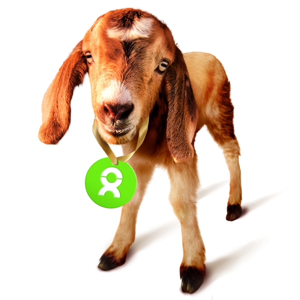 Archie the Goat - with Gift Tag